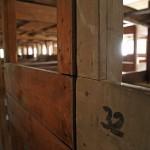 10 Auschwitz1-57e